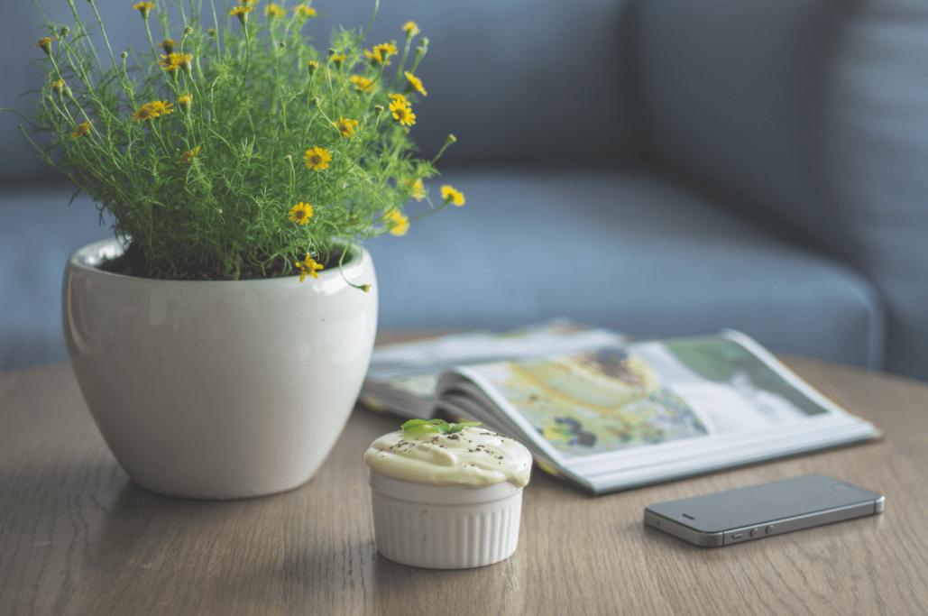 decorar con plantas