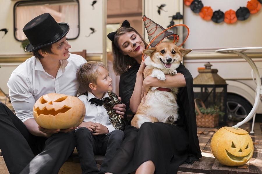decorar calabaza halloween
